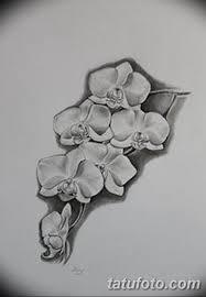 черно белый эскиз тату рисункок орхидея 11032019 031 Tattoo