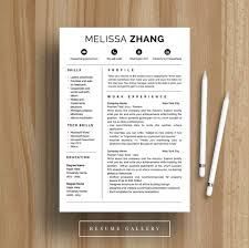 4 Page Professional Resume Template A4 And Us Letter Cv