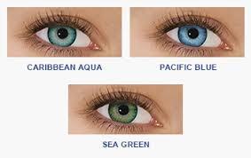 Freshlook Color Chart For Dark Eyes Freshlook Dimensions