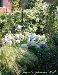 Il piccolo giardino di l.: un alleato per i piccoli giardini: il
