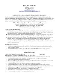Cosy Resume Examples Professional Profile With Free Resume Templates