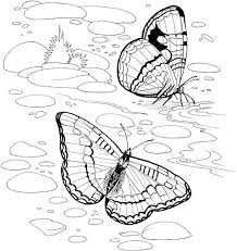 Small Picture Impressive Nature Coloring Pages Pefect Color 1838 Unknown