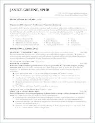 Senior Manager Resume Fresh 25 Luxury Project Manager Resume ...