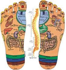 Chinese Foot Massage Points Reflexology Foot Reflexology