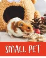 <b>Christmas</b> | Pets At Home