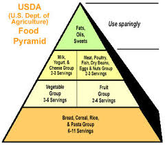 Food Pie Chart Usda The New Normal Obama Administration To Reveal New Food
