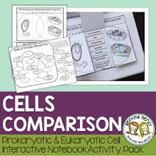 Bacteria Animal And Plant Cell Venn Diagram Science Interactive Notebook Plant Animal And Bacterial