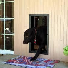 decorative dog doors. 100 Wall Pet Door Custom Decorative Dog Frame Mak Doors