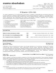 Cio Resume Example Examples Of Resumes