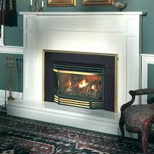 gas fireplace insert er replacement ventless cost sizes