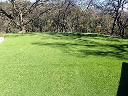 Fake Grass Carpet Nevada Ohio Gardeners Parks