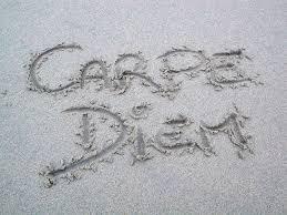 carpe diem project summer bookgirl when
