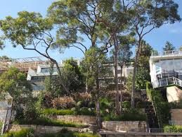 Small Picture Garden Travel Guide Sydney NSW Central Coast open gardens to visit