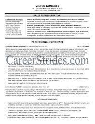 Sales Rep Job Description Sample 65 Images Sales Associate Job