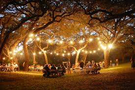 fairy lights in trees wedding for hanging ideas stirring