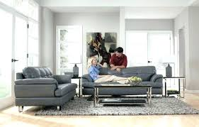 rugs that go with grey couches marvelous rug for couch kitchen what colors charcoal color jute