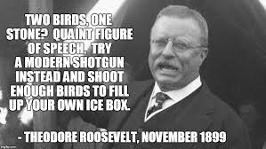 Quotes By Teddy Roosevelt Cool Teddy Roosevelt Quotes Imgflip