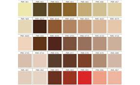 Pantone Brown Color Chart Www Bedowntowndaytona Com