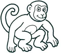 Monkey Coloring Pages Socialmetricinfo