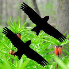 2 Aufkleber Milan 20cm Schwarz Vogel Fenster Warnvögel Vogelschutz