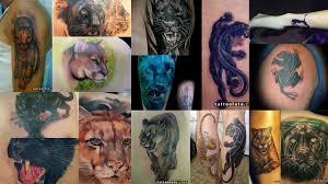 значение тату пума клуб татуировки фото тату значения эскизы