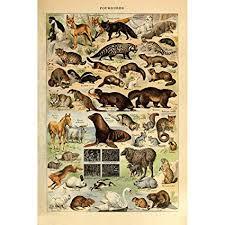 Amazon Com Meishe Art Retro Vintage Poster Print Art Wall
