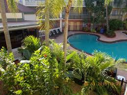 tropical landscaping and pool picture