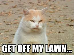Image result for get off my lawn