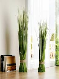 feng shui plants for harmony and
