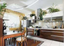 Money saving kitchen decorating with indoor plants