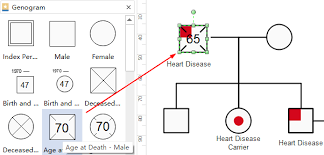How To Create A Genogram Quickly All You Need To Know