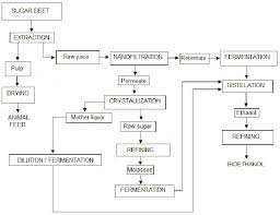Flow Chart For The Production Of Bioethanol And Byproducts