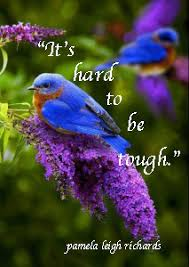 Purple Flower Quotes Pamela Leigh Richards Blue Bird Purple Flower Pamela Quote