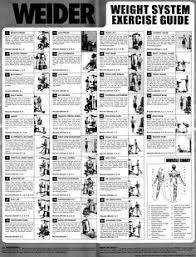 Weight And Exercise Chart Weider Pro 6900 Exercise Chart Gym Workout Chart Home Gym