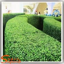 garden vertical green wall factory