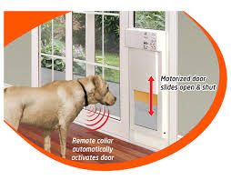 pet door extra large perfect dog door flap diy