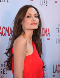 Angelina Jolie Hair Style angelina jolies natural hairstyle 2299 by stevesalt.us