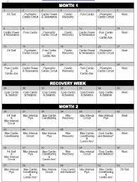 insanity workout calendar pdf without cost