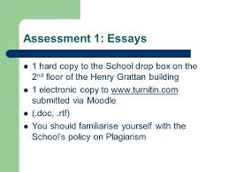 essay for christmas school life