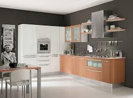 Kitchen Cabinets Contemporary Kithcen Designs Wonderful Contemporary Kitchen Cabinet On Kitchen