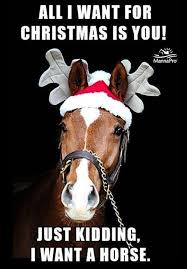 Pin by Liny on Funny Horse sayings | Horse quotes funny, Funny horses,  Christmas quotes funny