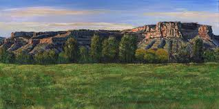 Image result for texas red river valley