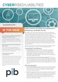 cyber risks and liabilities newsletter jan feb