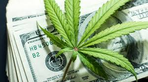 Ndev Stock Chart 30 Marijuana Stocks To Buy As The Future Turns Green