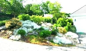interior rock garden ideas for front yard style home inside interior rock landscaping ideas10 landscaping