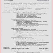 Examples Of Good Resumes And Bad Resumes Good Resume Examples for Jobs Beautiful Good Resume Free Job Cv 26
