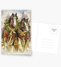 clydesdales postcards
