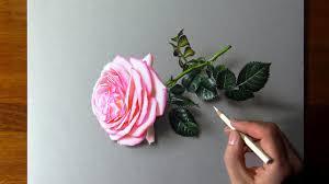 Drawing <b>Pink Rose</b> - YouTube