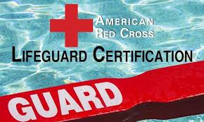 Image result for red cross certified lifeguard