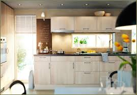 modern ikea kitchen cabinet doors high gloss black 62 birch cabinets foter 5 great light birch kitchen cabinets ideas that you can